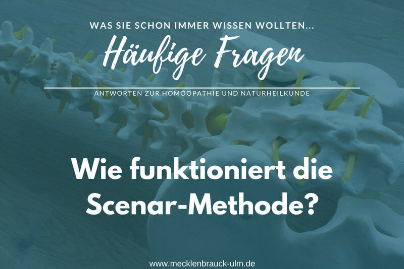 Wie funktioniert die Scenar-Methode?