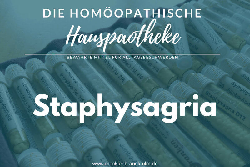 Staphysagria – Rittersporn